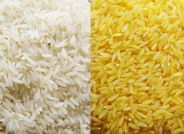 story of the origin of rice tagalog version