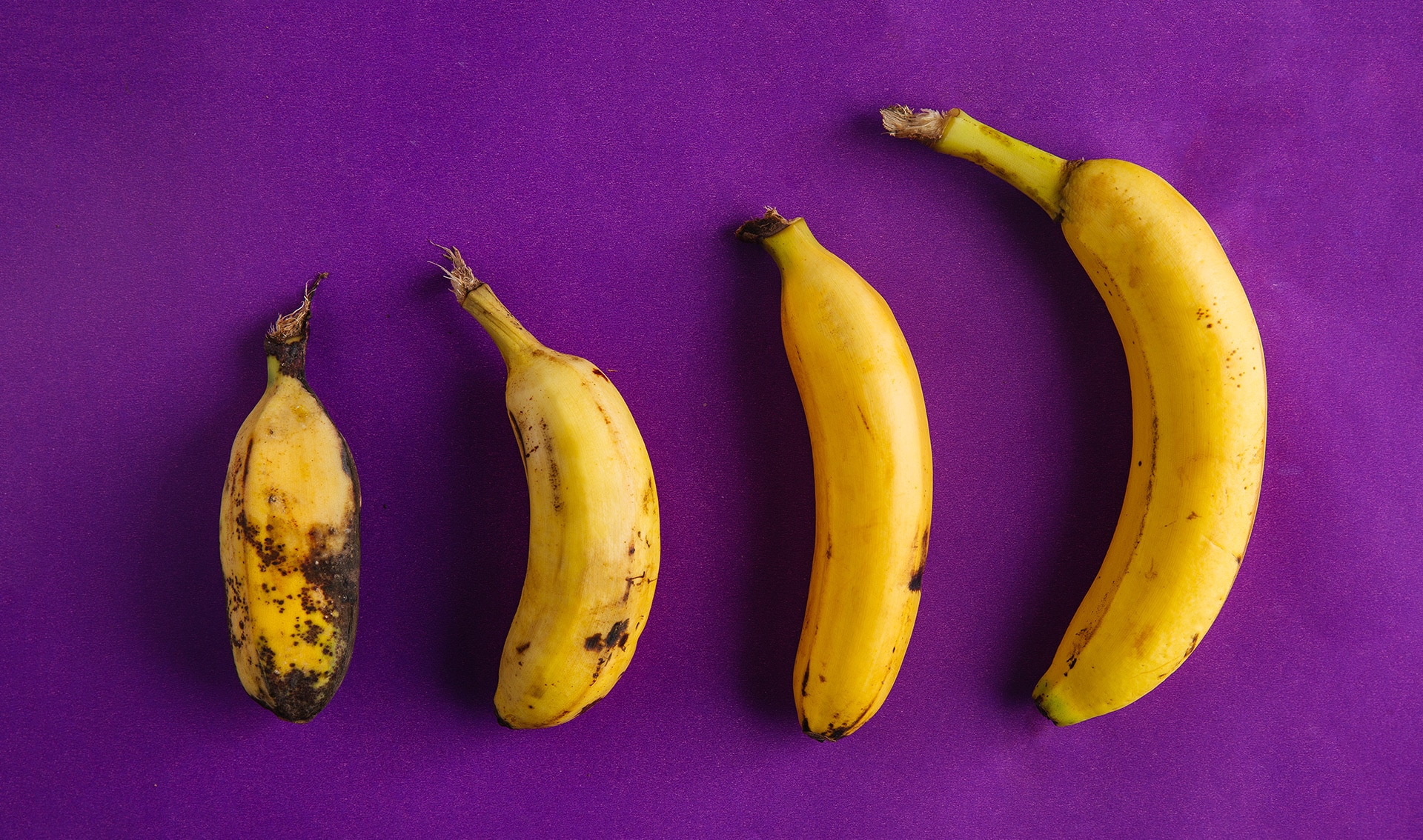 Go Bananas With These 12 Varieties Worth Seeking Out In The Philippines